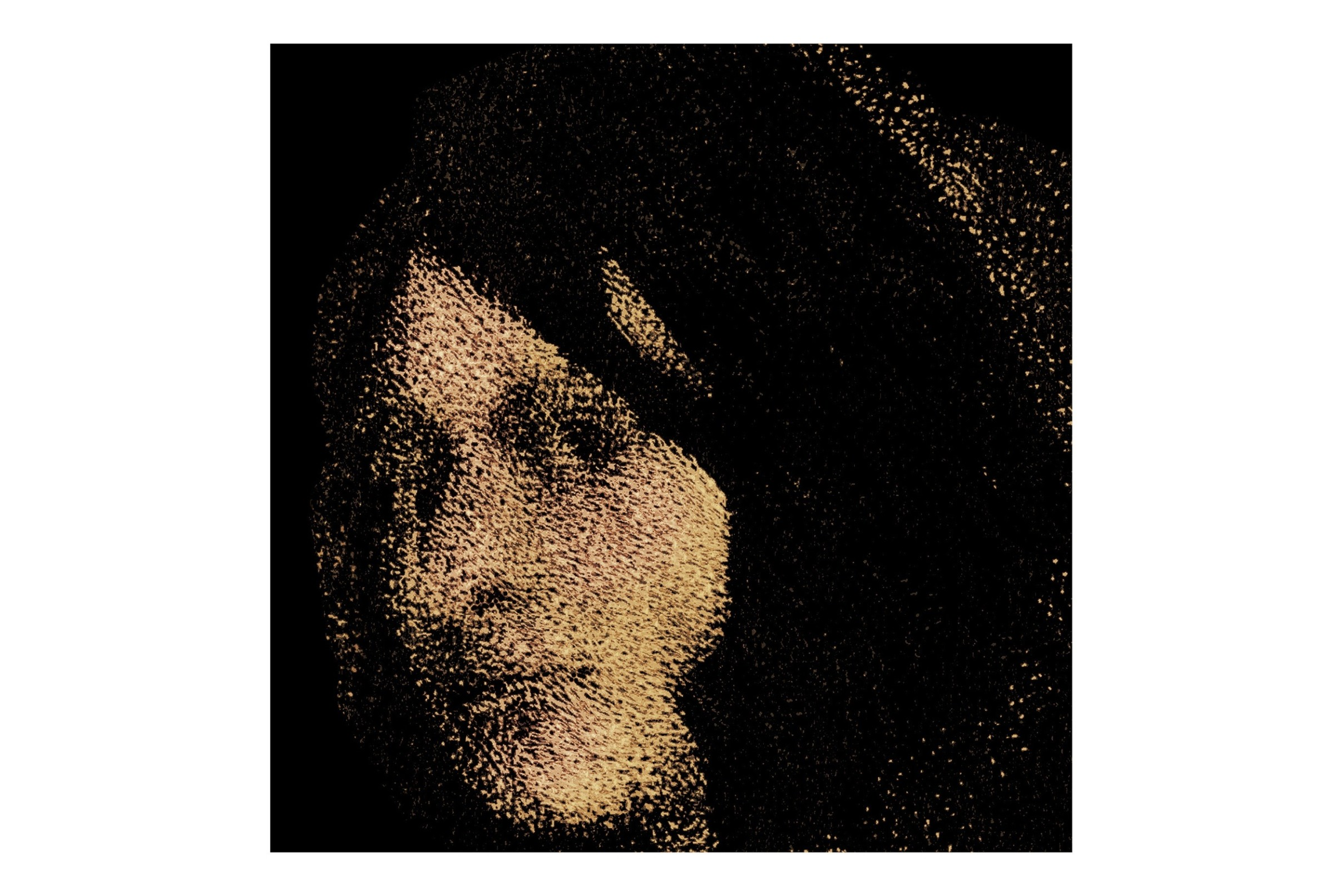 """<span class=""""link fancybox-details-link""""><a href=""""/exhibitions/17/works/image_standalone706/"""">View Detail Page</a></span><p><strong>Gwilym Hughes</strong></p><p>Twilight</p><p>relief etching & digital print, ed of 12</p><p>18 x 18cm</p><p>£100 framed</p><p>£85 unframed</p>"""
