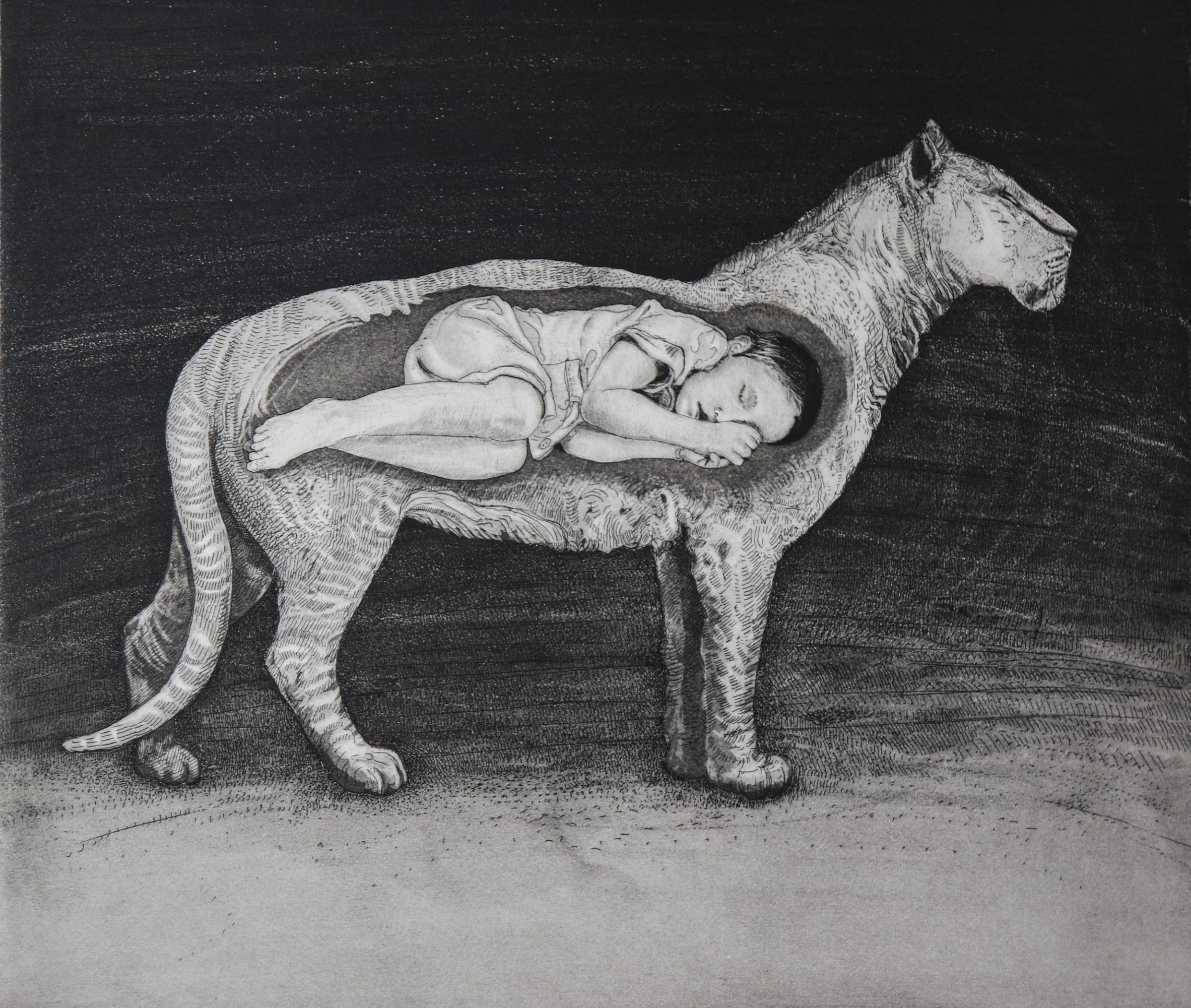 "<span class=""link fancybox-details-link""><a href=""/exhibitions/17/works/image_standalone732/"">View Detail Page</a></span><p><strong>Tammy Mackay</strong></p><p>Lion</p><p>etching and drypoint, ed of 15</p><p>52 x 55cm</p><p>£345 framed</p><p>£245 unframed</p>"
