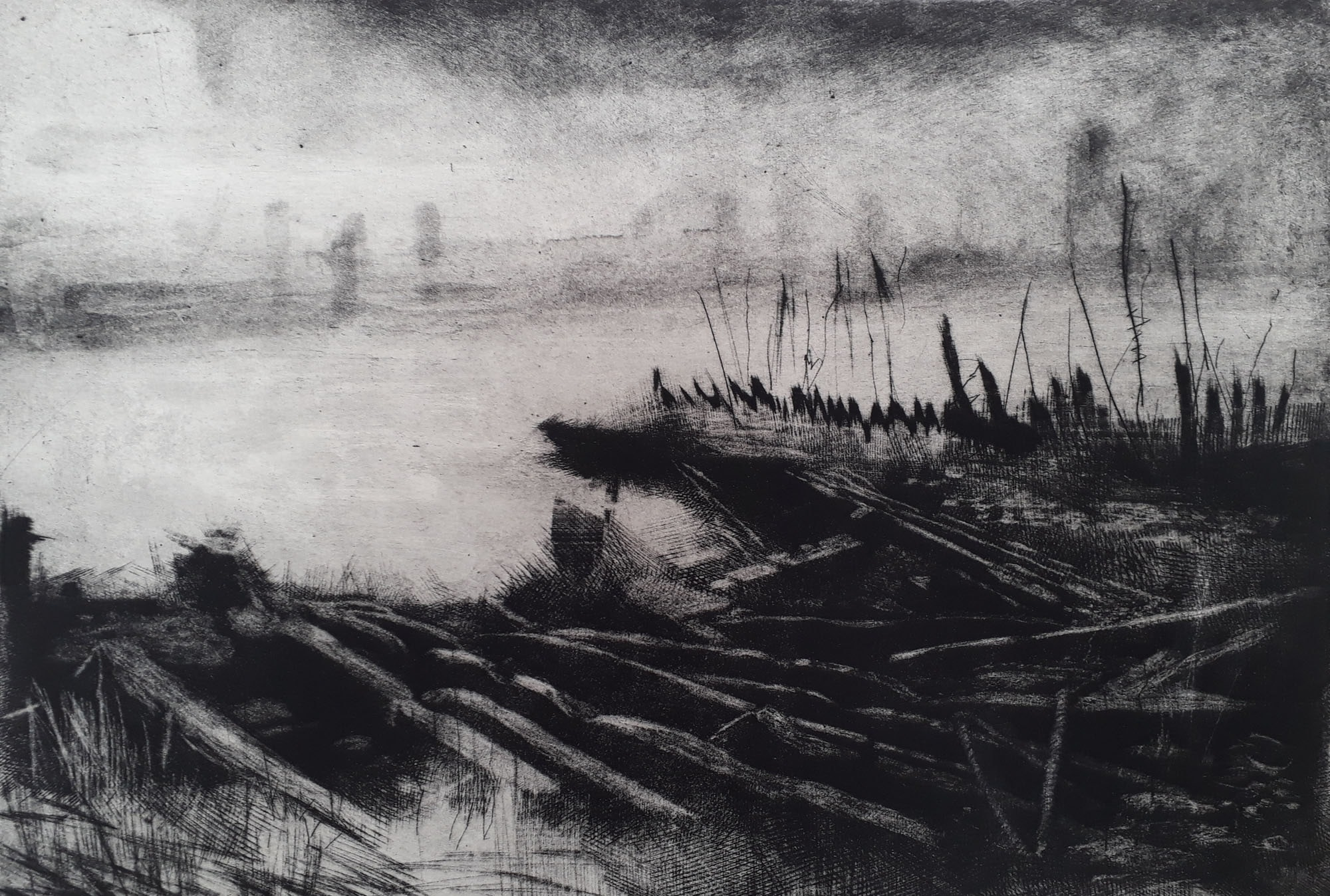 """<span class=""""link fancybox-details-link""""><a href=""""/exhibitions/17/works/image_standalone779/"""">View Detail Page</a></span><p><strong>Rosey Prince</strong></p><p>Remains</p><p>mezzotint, drypoint and spit bite, ed of 20</p><p>64 x 50cm</p><p>£420 framed</p><p>£385 unframed</p>"""