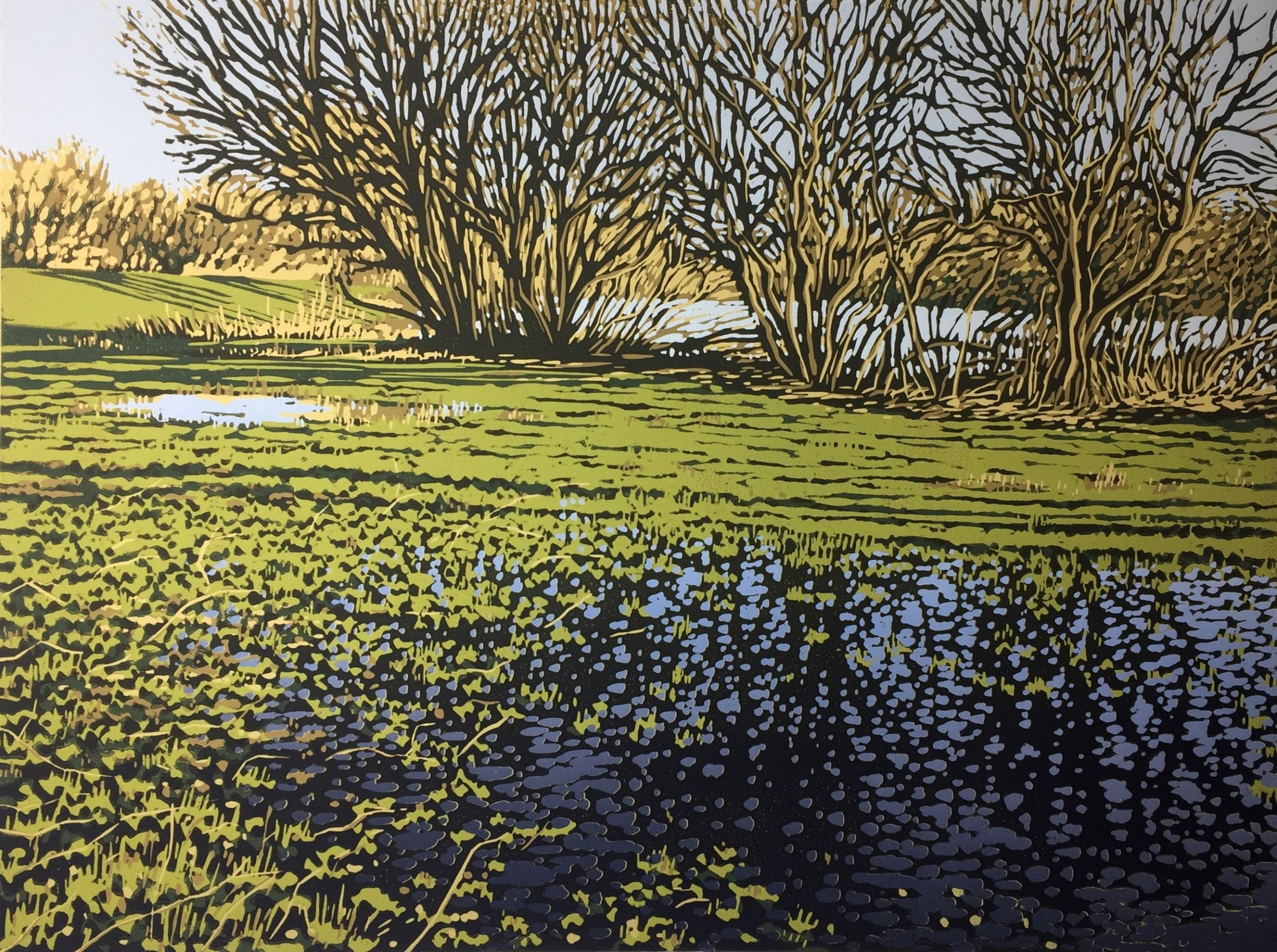 "<span class=""link fancybox-details-link""><a href=""/exhibitions/18/works/image_standalone971/"">View Detail Page</a></span><p>Alexandra Buckle</p><p>Lakeside Puddles</p><p>linocut</p><p>44 x 54cm</p><p>£380 framed</p><p>£320 unframed</p>"