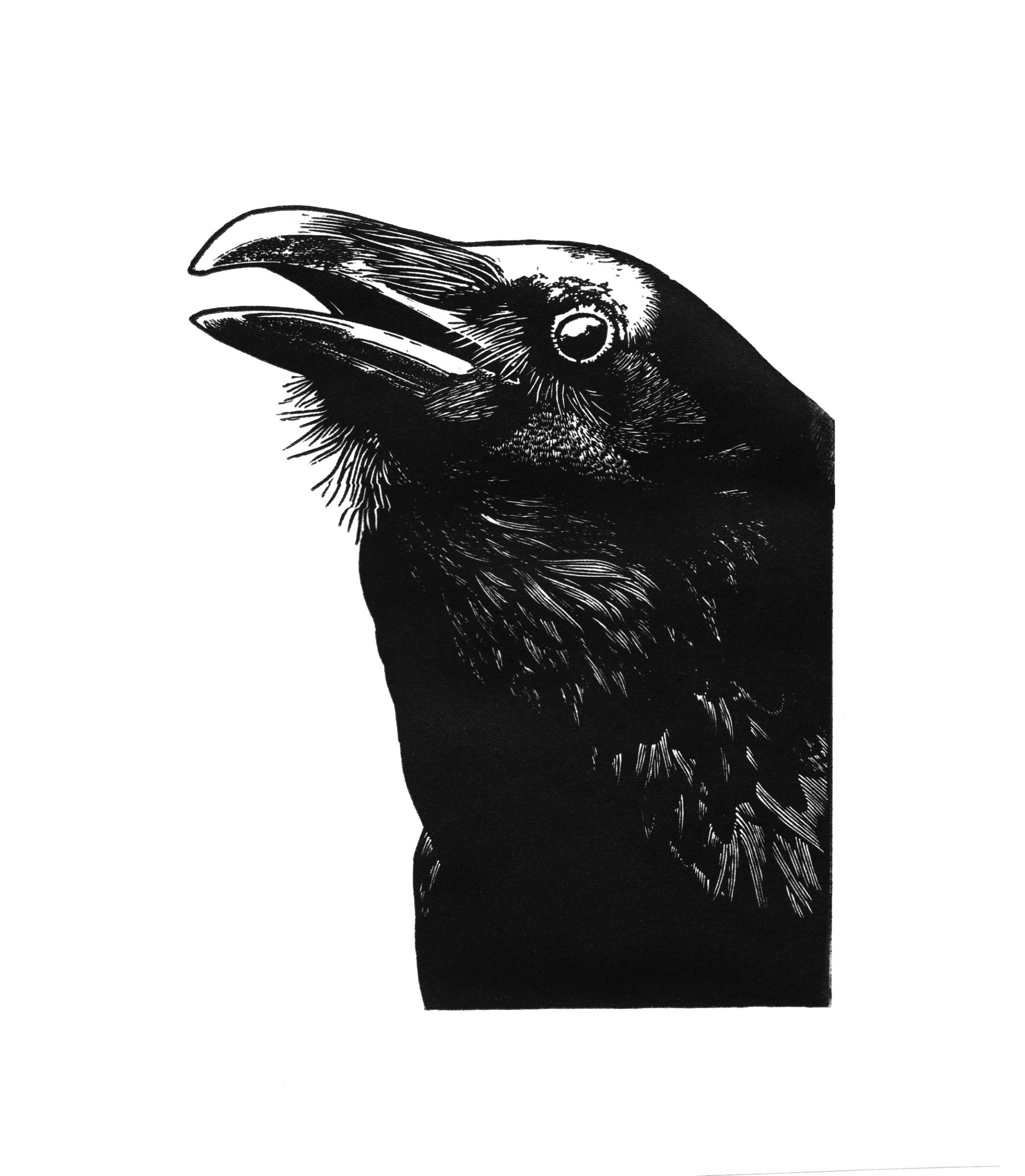 "<span class=""link fancybox-details-link""><a href=""/exhibitions/23/works/artworks_standalone11183/"">View Detail Page</a></span><div class=""artist""><span class=""artist""><strong>Blaze Cyan RE</strong></span></div><div class=""title""><em>Quoth the Raven 'Nevermore'</em></div><div class=""medium"">wood engraving</div><div class=""dimensions"">22 x 17cm paper size<br>12 x 9cm image size</div><div class=""edition_details"">edition of 100</div>"