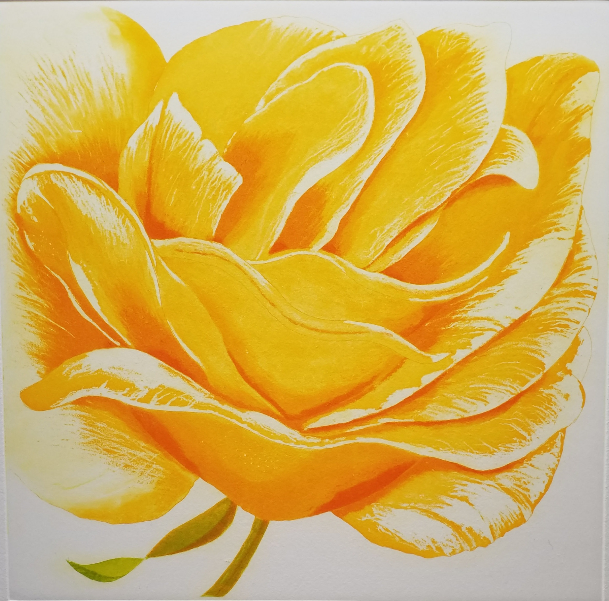 "<span class=""link fancybox-details-link""><a href=""/artists/329-grainne-cuffe-are/works/11484/"">View Detail Page</a></span><div class=""artist""><span class=""artist""><strong>Grainne Cuffe ARE</strong></span></div><div class=""title""><em>A Golden Rose</em></div><div class=""medium"">etching</div><div class=""dimensions"">50 x 47 cm framed<br /> 21.5 x 21.5 cm image size</div><div class=""edition_details"">edition of 65</div><div class=""price"">£450.00 framed<br>£320.00 unframed</div>"