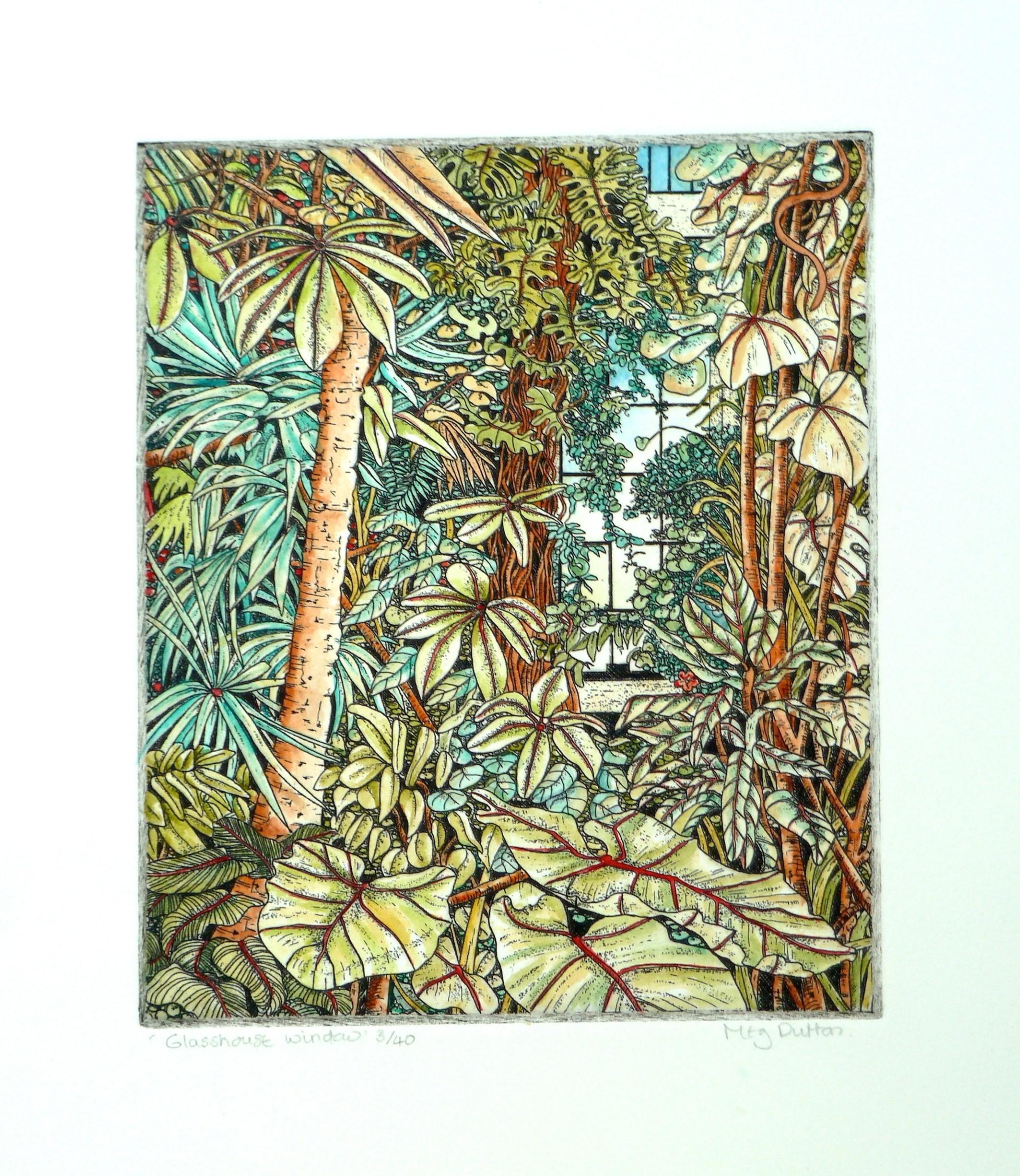 """<span class=""""link fancybox-details-link""""><a href=""""/exhibitions/23/works/artworks_standalone11207/"""">View Detail Page</a></span><div class=""""artist""""><span class=""""artist""""><strong>Meg Dutton RE</strong></span></div><div class=""""title""""><em>Glasshouse Window</em></div><div class=""""medium"""">etching and watercolour</div><div class=""""dimensions"""">24 x 21.5cm paper size<br>15 x 12.5cm image size</div><div class=""""edition_details"""">edition of 40</div>"""