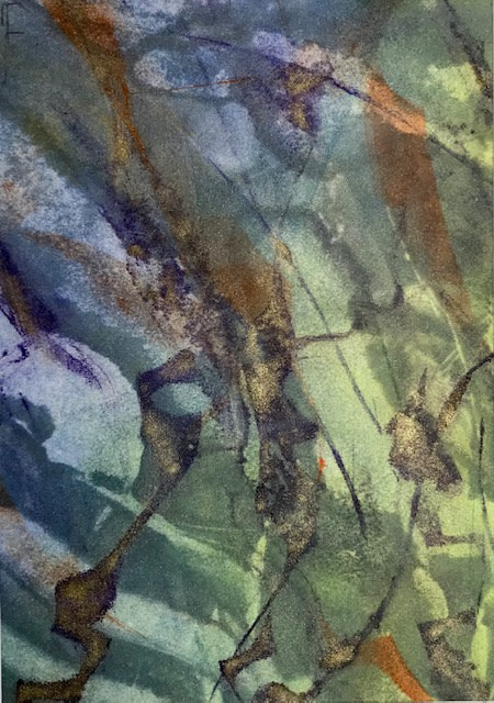 """<span class=""""link fancybox-details-link""""><a href=""""/exhibitions/21/works/artworks_standalone10900/"""">View Detail Page</a></span><div class=""""artist""""><span class=""""artist""""><strong>Jackie Newell RE</strong></span></div><div class=""""title""""><em>Reflections of Spring during Lockdown 2020 no.2</em></div><div class=""""medium"""">monoprint</div><div class=""""dimensions"""">29 x 23cm framed<br>20 x 14cm unframed</div><div class=""""edition_details"""">1/1</div>"""