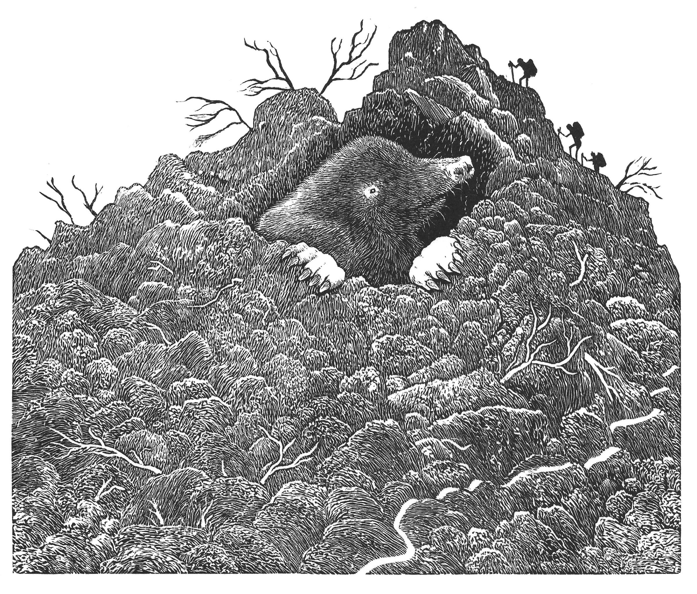 "<span class=""link fancybox-details-link""><a href=""/exhibitions/23/works/artworks_standalone11333/"">View Detail Page</a></span><div class=""artist""><span class=""artist""><strong>Jim Westergard RE</strong></span></div><div class=""title""><em>Making a Mountain Of a Molehill</em></div><div class=""medium"">wood engraving</div><div class=""dimensions"">17.5 x 20.5 cm paper size<br>12.5 x 15 cm image size</div><div class=""edition_details"">edition of 60</div>"