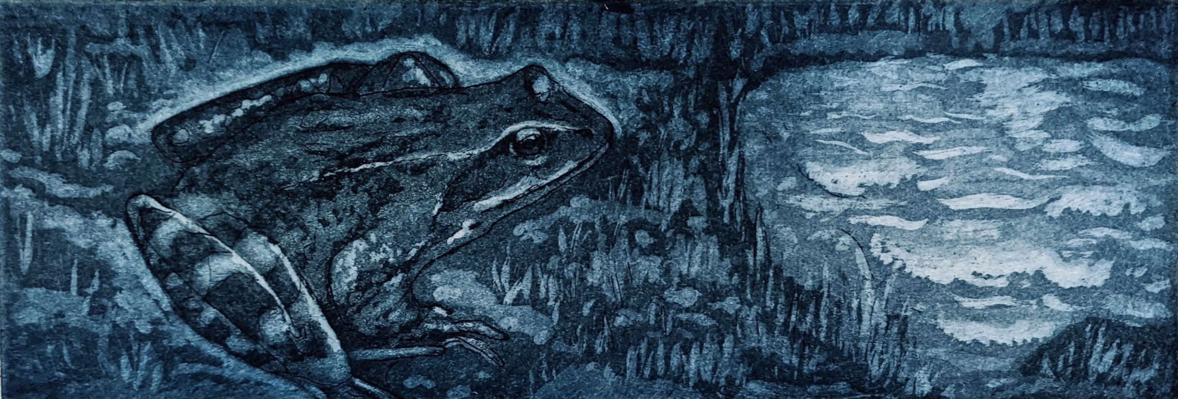 "<span class=""link fancybox-details-link""><a href=""/exhibitions/23/works/artworks_standalone11271/"">View Detail Page</a></span><div class=""artist""><span class=""artist""><strong>Linda Landers RE</strong></span></div><div class=""title""><em>Blue Frog</em></div><div class=""medium"">etching and aquatint</div><div class=""dimensions"">24 x 34cm</div><div class=""edition_details"">edition of 45</div>"
