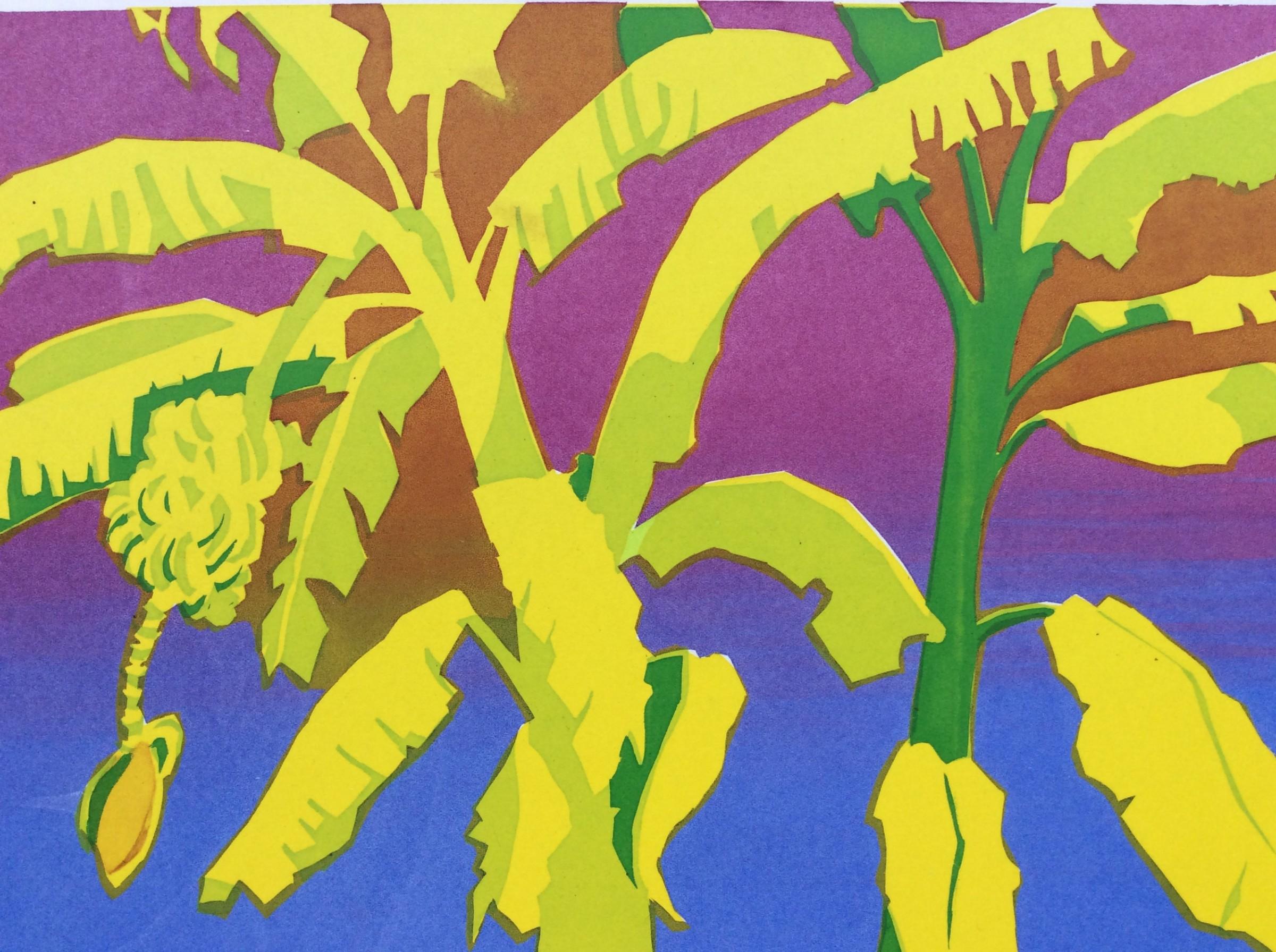 "<span class=""link fancybox-details-link""><a href=""/exhibitions/23/works/artworks_standalone11314/"">View Detail Page</a></span><div class=""artist""><span class=""artist""><strong>Margaret Sellars RE</strong></span></div><div class=""title""><em>Banana Plantation</em></div><div class=""medium"">silkscreen</div><div class=""dimensions"">35 x 50 cm paper size<br>21 x 30 cm image size</div><div class=""edition_details"">edition of 10</div>"