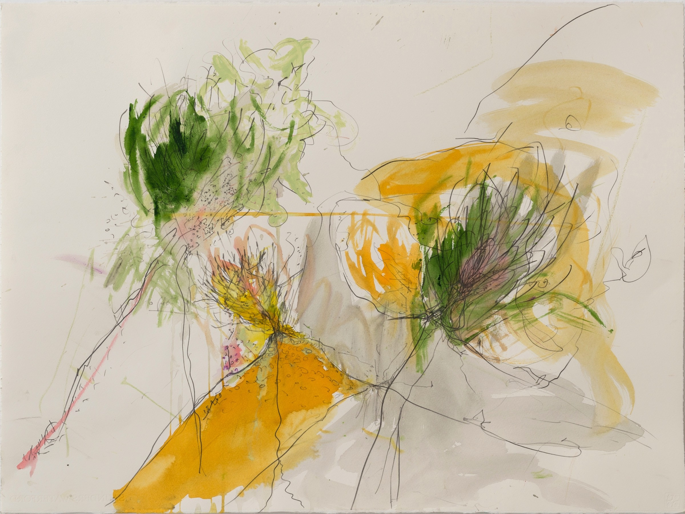 <span class=&#34;link fancybox-details-link&#34;><a href=&#34;/exhibitions/16/works/image_standalone372/&#34;>View Detail Page</a></span><p>Lili Cohen Prah-Ya, &#160;<em>Folwers and Thornes</em>, &#163;2545</p>