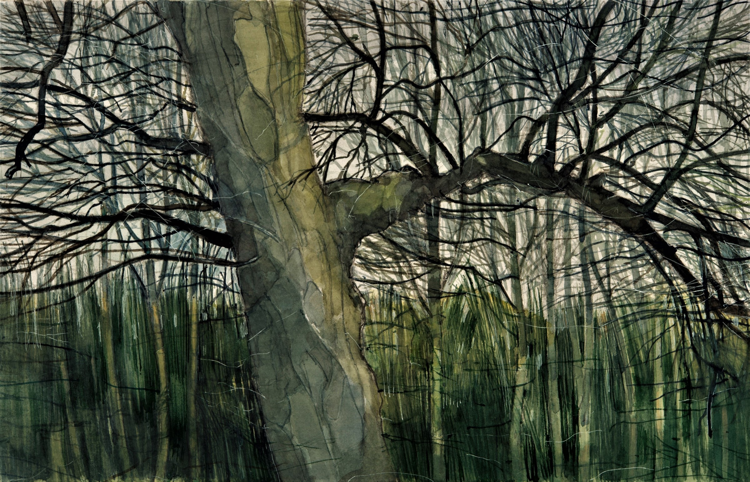 <span class=&#34;link fancybox-details-link&#34;><a href=&#34;/exhibitions/16/works/image_standalone395/&#34;>View Detail Page</a></span><p>Robert Parker,<em>&#160;Banks of Swale Winter,</em>&#160;&#163;300</p>
