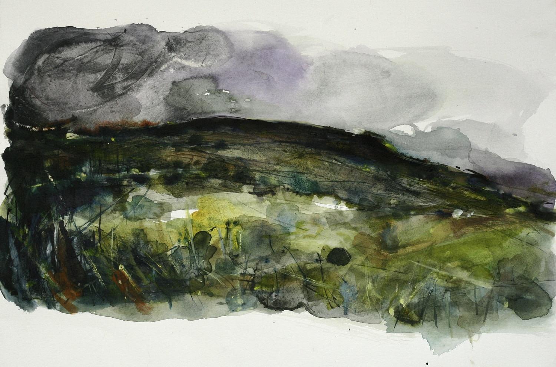 "<span class=""link fancybox-details-link""><a href=""/exhibitions/36/works/image_standalone4866/"">View Detail Page</a></span><p>Karin Littlewood</p><p><em>The Moors</em></p><p>watercolour, ink & pencil</p><p>£450</p><p></p><p>Judge's Choice</p><p>Selected by Jim Hunter VPRWS</p><p>RWS Artist & Junior Vice President</p>"