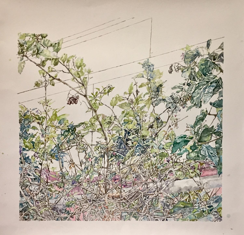 """<span class=""""link fancybox-details-link""""><a href=""""/exhibitions/36/works/image_standalone4887/"""">View Detail Page</a></span><p>Nicola Saunderson</p><p><em>Somewhere Else</em></p><p>watercolour</p><p>£1250</p>"""