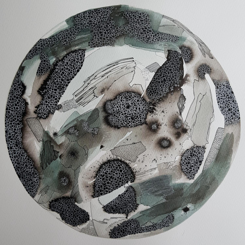 "<span class=""link fancybox-details-link""><a href=""/exhibitions/36/works/image_standalone4911/"">View Detail Page</a></span><p>Louise Ann Wright</p><p><em>Petridish Series 12.01.20</em></p><p>watercolour & ink</p><p>£375</p>"