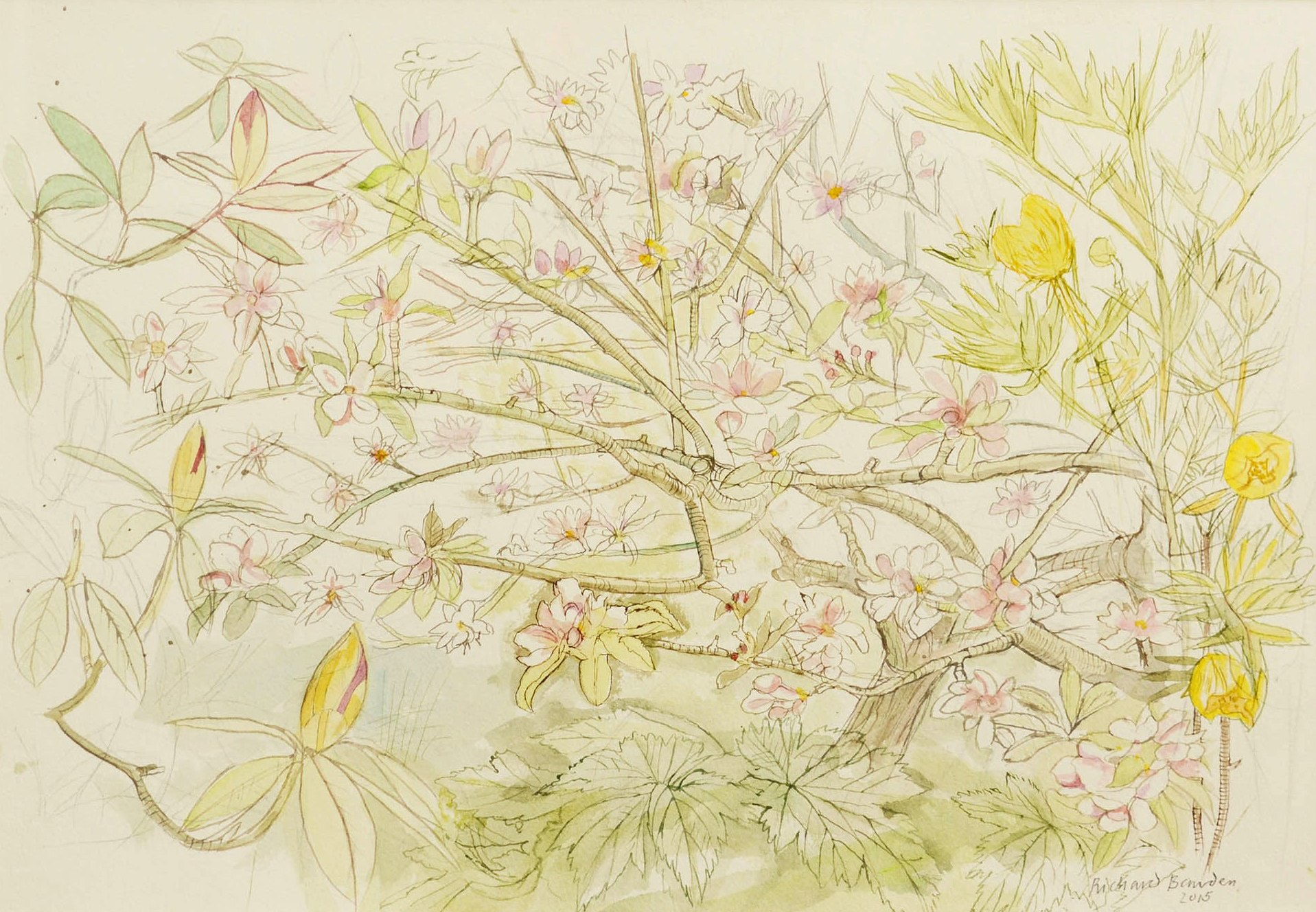 <span class=&#34;link fancybox-details-link&#34;><a href=&#34;/artists/38-richard-bawden/works/9803-richard-bawden-apple-blossom/&#34;>View Detail Page</a></span><div class=&#34;artist&#34;><span class=&#34;artist&#34;><strong>Richard Bawden</strong></span></div>