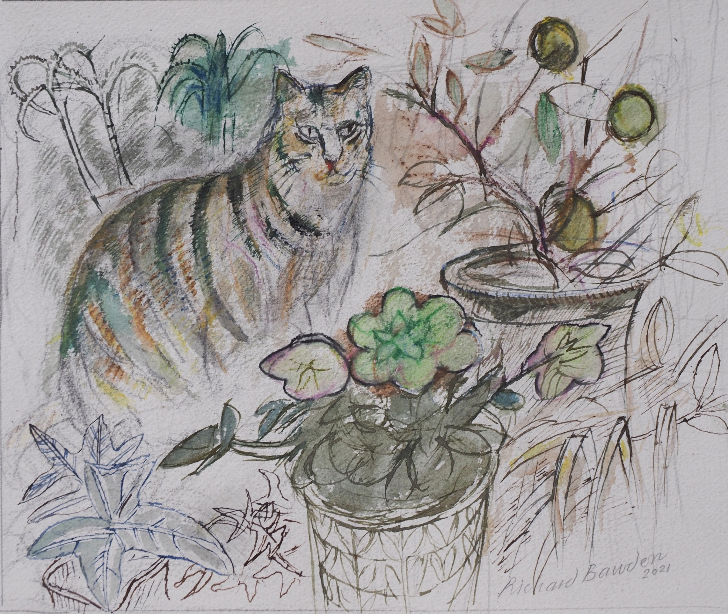 """<span class=""""link fancybox-details-link""""><a href=""""/artists/38-richard-bawden/works/12668-richard-bawden-christmas-rose/"""">View Detail Page</a></span><div class=""""artist""""><span class=""""artist""""><strong>Richard Bawden</strong></span></div><div class=""""title""""><em>Christmas Rose</em></div><div class=""""medium"""">pen & ink with watercolour</div><div class=""""dimensions"""">Artwork: 29 x 24cm</div><div class=""""price"""">£480.00</div>"""