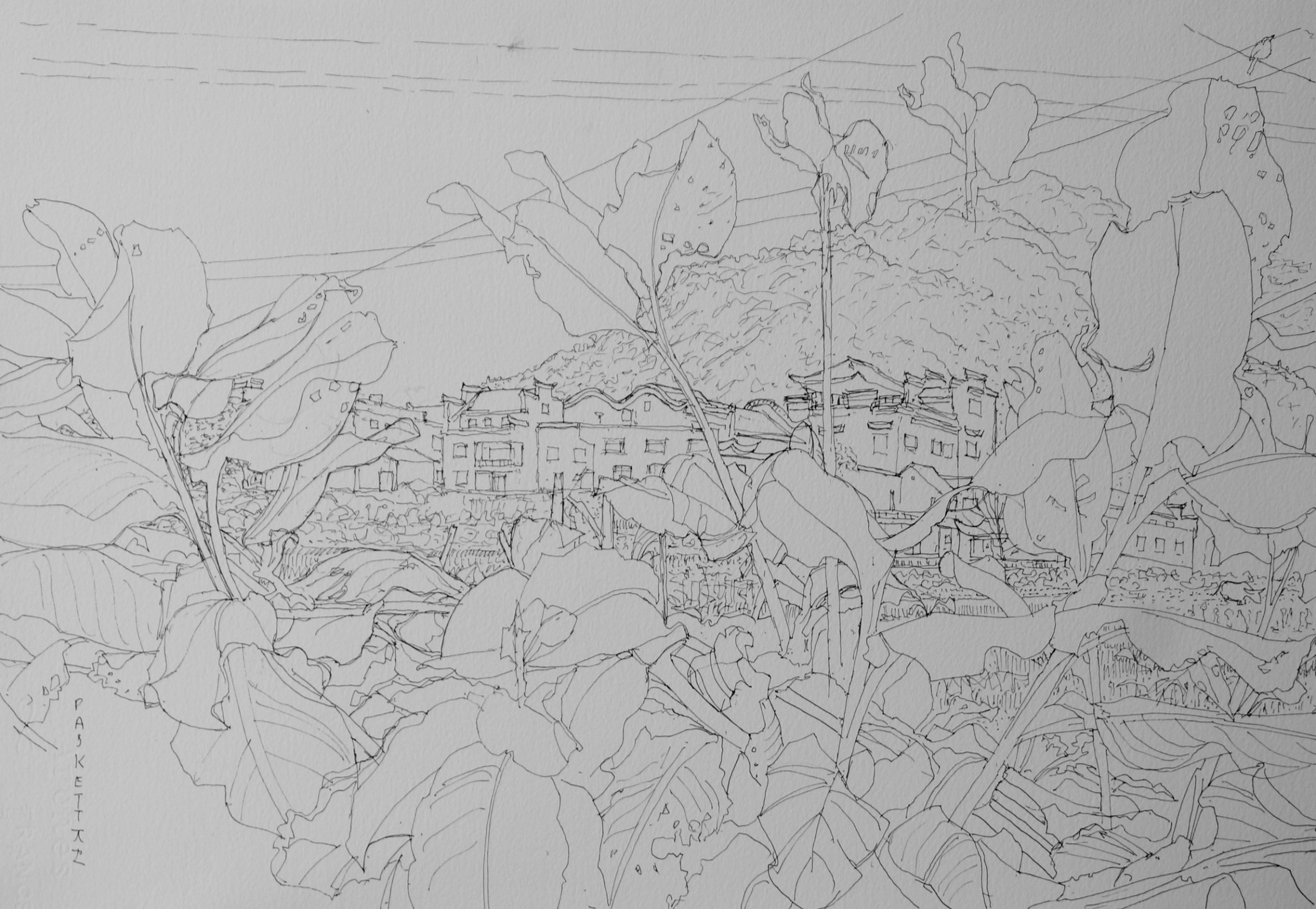 <span class=&#34;link fancybox-details-link&#34;><a href=&#34;/exhibitions/24/works/artworks_standalone10765/&#34;>View Detail Page</a></span><div class=&#34;artist&#34;><span class=&#34;artist&#34;><strong>David Paskett</strong></span></div><div class=&#34;title&#34;><em>Outside the village, Anhui</em></div><div class=&#34;medium&#34;>pen</div>
