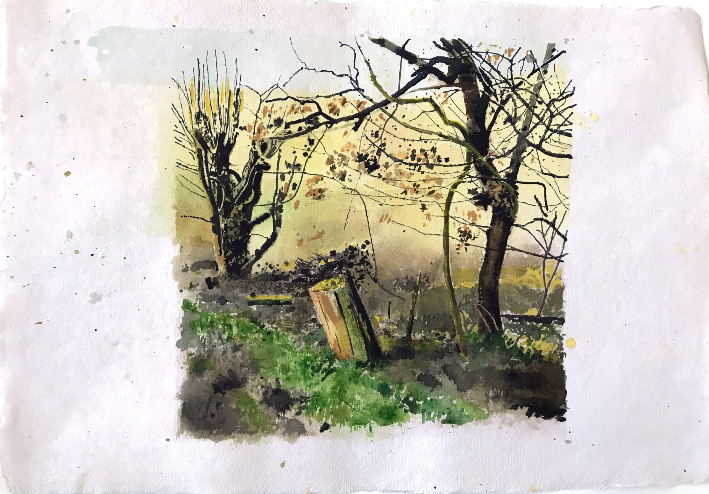 """<span class=""""link fancybox-details-link""""><a href=""""/artists/88-iain-nicholls/works/12282-iain-nicholls-elsecar-cropped-trees-study-4/"""">View Detail Page</a></span><div class=""""artist""""><span class=""""artist""""><strong>Iain Nicholls</strong></span></div><div class=""""title""""><em>Elsecar Cropped Trees Study 4</em></div><div class=""""medium"""">watercolour on paper - mounted on board</div><div class=""""dimensions"""">Artwork: 43 x 60 cm</div><div class=""""price"""">£420.00</div>"""