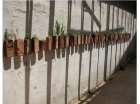 reverta - arte e sustentabilidade