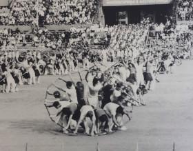 Stadium Dinamo (Dynamo Stadium)