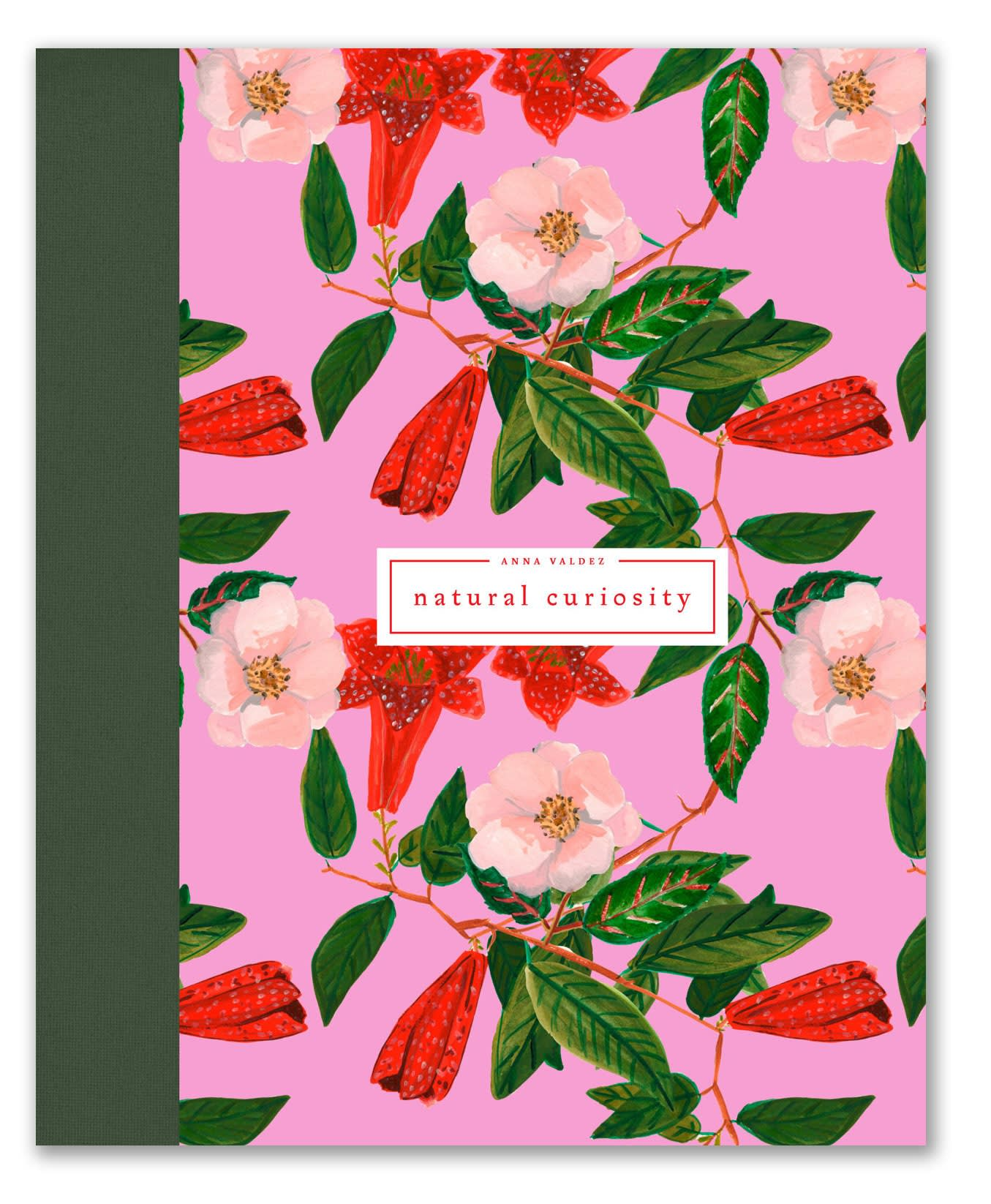 "Cover of ""Natural Curiosity"" book by Anna Valdez, featuring pink background and bright flowers"