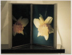 Birgit Jürgenssen  Narziß und Echo / Narcissus and Echo [Diptych], 1991  Transparency, glass, lamps, metal frames and wood  30 x 43.6 cm 11 3/4 x 17 1/8 ins