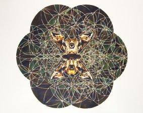 Mat Chivers, Metaphormosis (Eyed Hawk Moth), 2013