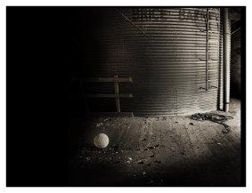 Alastair Mackie, Untitled (Boconnoc), 2011