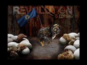 'Revolution'   Illustration at Fire