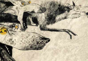 Wolfish Plots