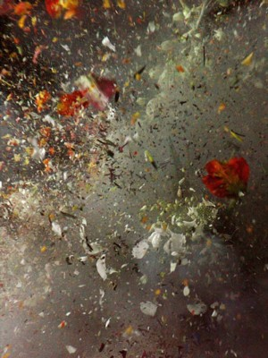 Ori Gersht, still from Big Bang, 2006