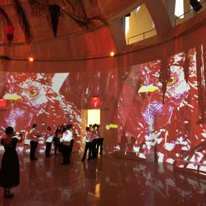 Noche de Brujas, site specific art experience, Faena Arts (VIDEO LINK)