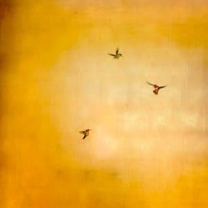Trio in Golden Sky
