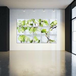 Piper excelsum (Kawakawa)