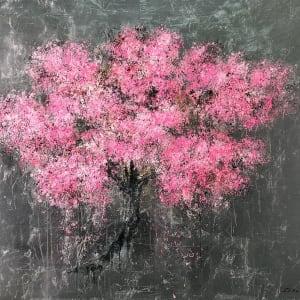 Daniel Hooper, The Cherry Blossom, 2019