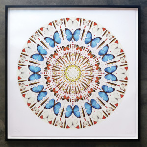 Iain Cadby, Summer Mandala , 2019