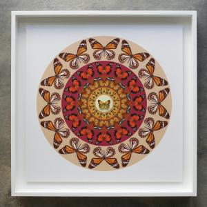 Iain Cadby, Target Mandala (Burnt Sienna and red) , 2020