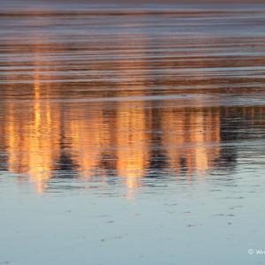 Nick Wapshott, Reflections I