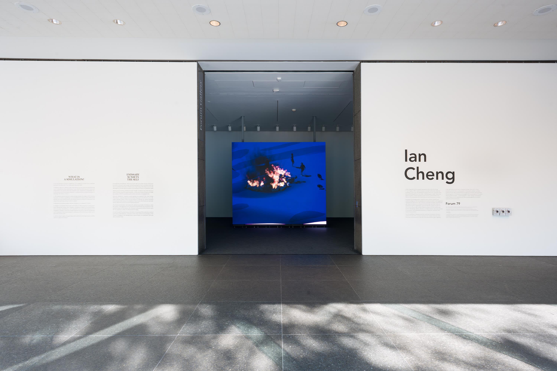 Ian Cheng Emissary Sunsets The Self