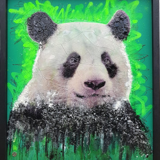 Dan Pearce, Endangered - The Giant Panda, 2018