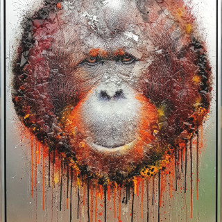 Dan Pearce, Endangered - The Orangutan, 2018