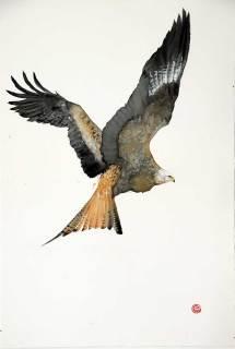 Karl Martens, Red Kite