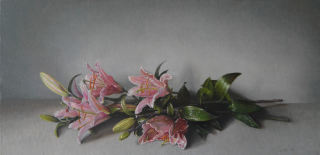 Jef Diels, Pictures of Lily