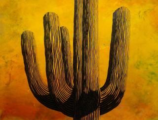 John Wilkins, Cactus 2
