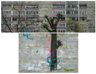 David Hepher, Three Trees, 2010-11