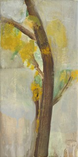 Sarah Armstrong-Jones, Tree With Lichen, 2009