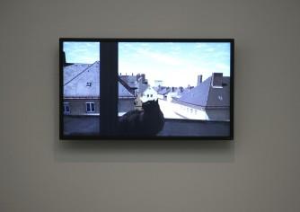 David Claerbout at De Vishal, Haarlem