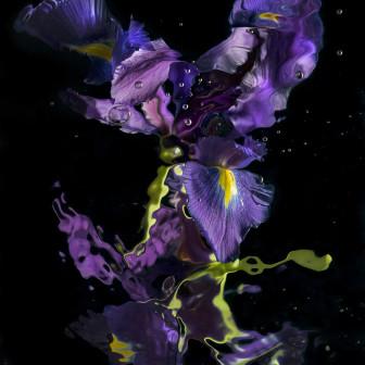 Aqua Flora no.010