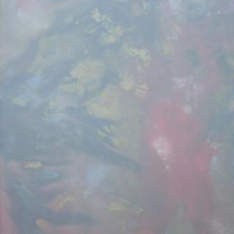 Wilderness in Paint 27, 2014