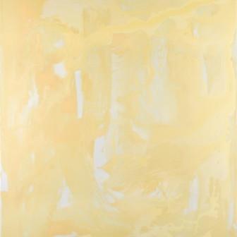 Wilderness in Paint 13, 2014