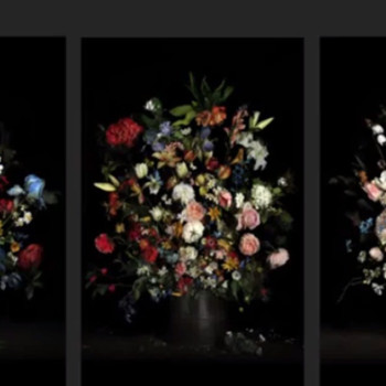 ORI GERSHT: Still Life: Capturing the Moment