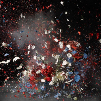 ORI GERSHT shortlisted for Prix Pictet: Disorder